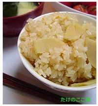 takenoko0322-2 たけのこ(筍) ご飯や煮物人気レシピ!あく抜きやゆで方・保存方法は?