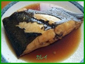 hi1-1 ヒラメの人気レシピ 唐揚げ・煮つけ・カルパッチョ等