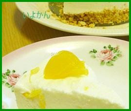 iyo1 いよかん(伊予柑)レシピ ジャム・ケーキ・ピール・ゼリー