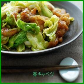 kya1 春キャベツレシピ 人気1 位は? サラダだけはありません。