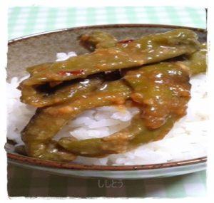 sisi1-300x285 ししとう 常備菜レシピ 人気 1 位は辛くない料理