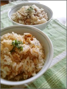 tuna1 ツナ缶人気で簡単レシピ!ご飯やパスタでお弁当にも!